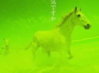 この画像は、このサイトの記事「中島みゆき 糸 無料音楽視聴動画まとめ YouTube」のイメージ写真画像として利用しています。