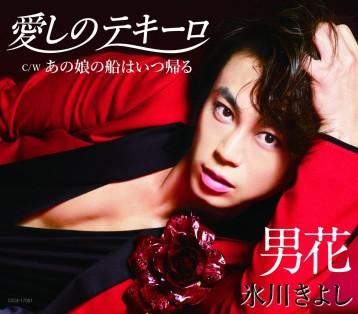 この画像は、このサイトの記事「氷川きよし 愛しのテキーロ 無料音楽視聴動画まとめ YouTube」のイメージ写真画像として利用しています。