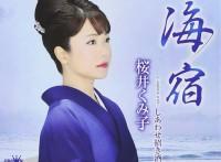 この画像は、このサイトの記事「桜井くみ子 海宿 無料音楽視聴動画まとめ YouTube」のイメージ写真画像として利用しています。