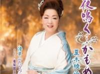 この画像は、このサイトの記事「夏木綾子 夜鳴く・・・かもめ 無料音楽視聴動画まとめ YouTube」のイメージ写真画像として利用しています。