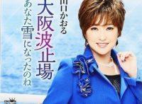 この画像は、このサイトの記事「山口かおる 大阪波止場 無料音楽視聴動画まとめ YouTube」のイメージ写真画像として利用しています。